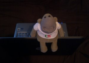 Chimp with a laptop