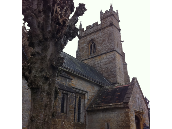 church_and_tree-claire-fuller