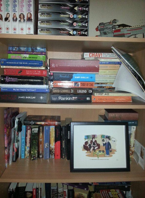 My Bookcase