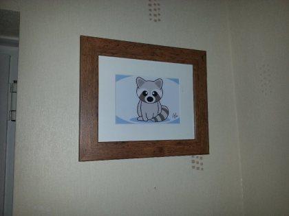 raccoon-pic