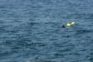 2014-12-08-bw-beacham