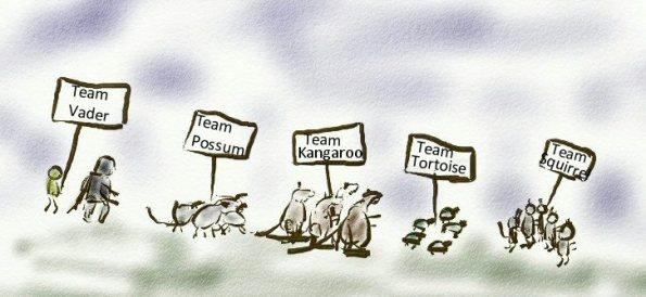 Meet the Teams