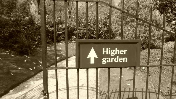 Higher Garden