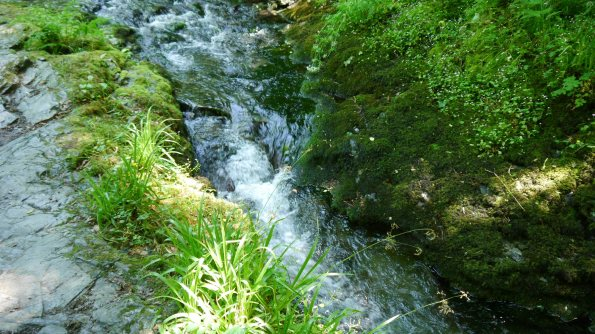 Bubbling Brook